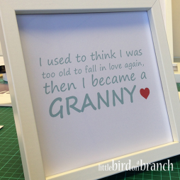 I used to think I was too told to fall in love again, then I became a Granny framed print